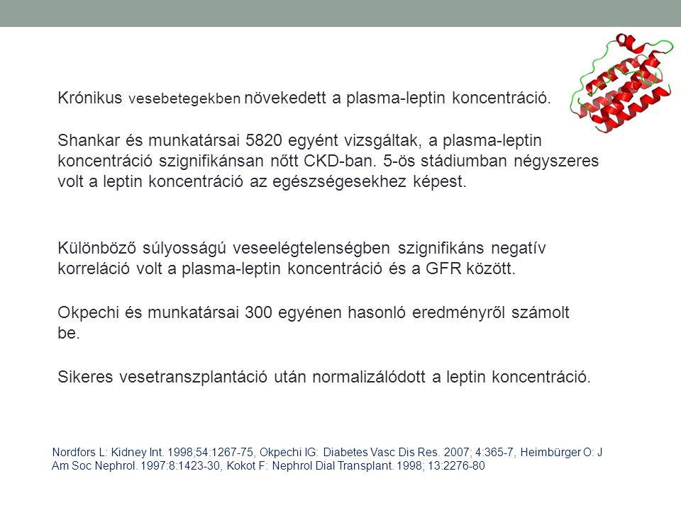 Krónikus vesebetegekben növekedett a plasma-leptin koncentráció. Különböző súlyosságú veseelégtelenségben szignifikáns negatív korreláció volt a plasm