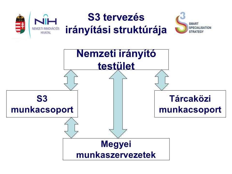Az S3 folyamat irányítási struktúrája Kulcselemei: A Nemzeti S3 megalkotásának irányítási rendszere Az S3-at fenntartó irányítási rendszer A társadalmi/EDP folyamat szerepe a rendszerben Testületek és feladataik: Nemzeti Irányító Testület: szakmai felügyelet és javaslattétel Központi S3 Munkaszervezet: szakmai és metodikai koordináció Megyei Munkaszervezetek: szakosodási irányok meghatározása Tárcaközi Munkacsoport: összehangolás az operatív programokkal