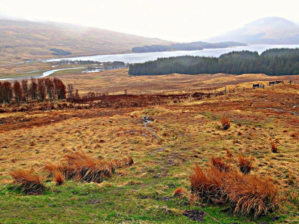 Trossachs Nemzeti Park: A Dél-Skócia és a Felföld határán elterülő Trossachs Nemzeti Park hanga borította hegyei és az itt fekvő Loch Lomond, az orszá