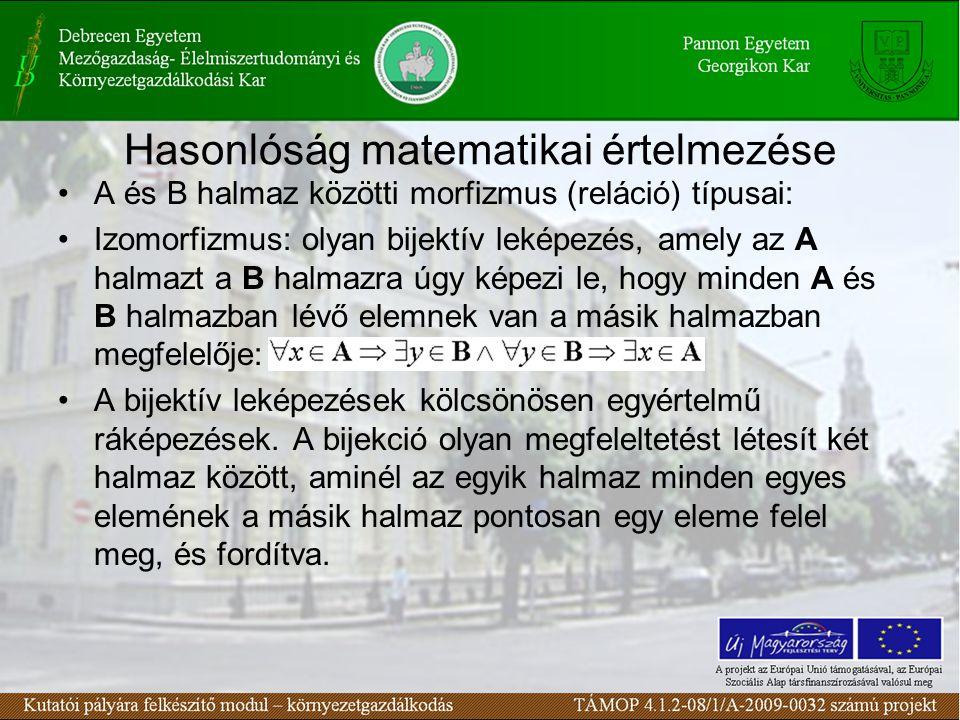 Homomorfizmus: ha az A halmazt a B halmazba képezi le, vagyis minden A-beli elemnek van a B-ben megfelelője, de fordítva már nem Automorfizmus: ha önmagára izomorf Hasonlósági reláció reflexív: –Egy objektum önmagához (ugyanabban az időpontban) nyilvánvalóan minden szempontból hasonló: a ρ a Hasonlósági reláció szimmetrikus: –Bármelyik objektum tulajdonságaiból a másikra következtetéseket tudjunk meghatározni: a ρ b -> b ρ a