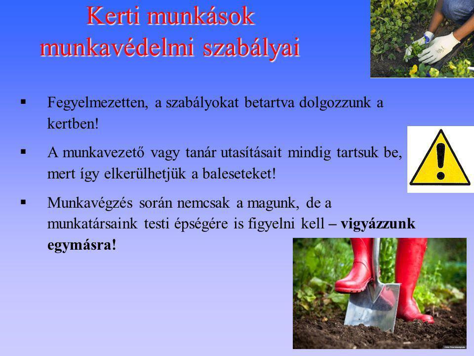 Kerti munkások munkavédelmi szabályai  Fegyelmezetten, a szabályokat betartva dolgozzunk a kertben!  A munkavezető vagy tanár utasításait mindig tar