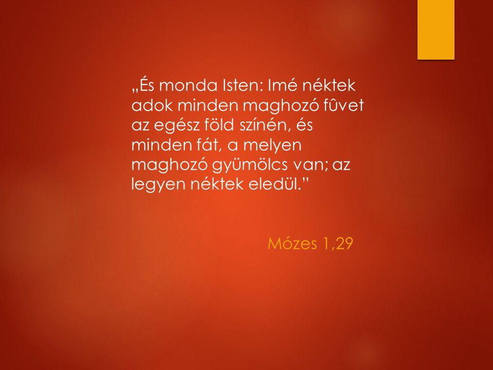 """""""És monda Isten: Imé néktek adok minden maghozó fûvet az egész föld színén, és minden fát, a melyen maghozó gyümölcs van; az legyen néktek eledül. Mózes 1,29"""
