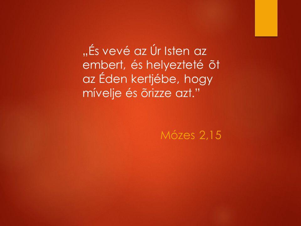 """""""És vevé az Úr Isten az embert, és helyezteté õt az Éden kertjébe, hogy mívelje és õrizze azt. Mózes 2,15"""