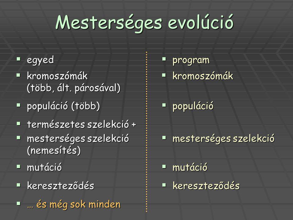 Mesterséges evolúció  egyed  program  kromoszómák (több, ált. párosával)  kromoszómák  populáció (több)  populáció  természetes szelekció +  m