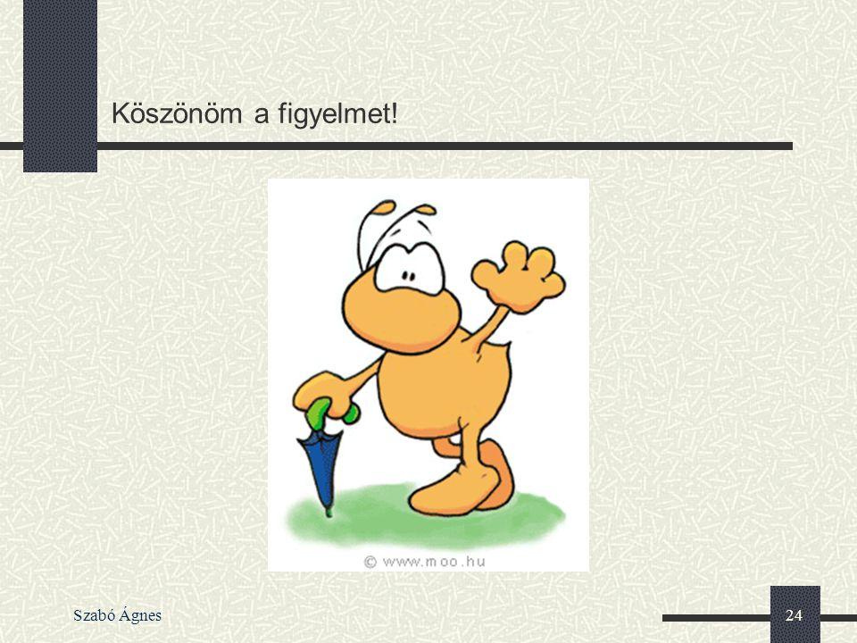 Szabó Ágnes24 Köszönöm a figyelmet!