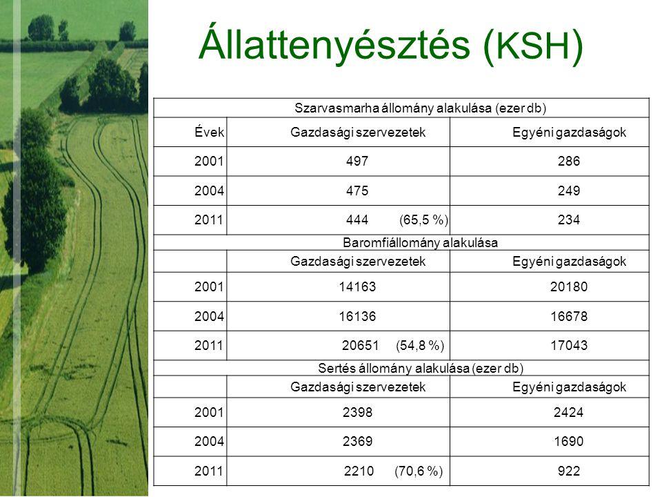 Állattenyésztés ( KSH ) Szarvasmarha állomány alakulása (ezer db) ÉvekGazdasági szervezetekEgyéni gazdaságok 2001497286 2004475249 2011 444 (65,5 %)23