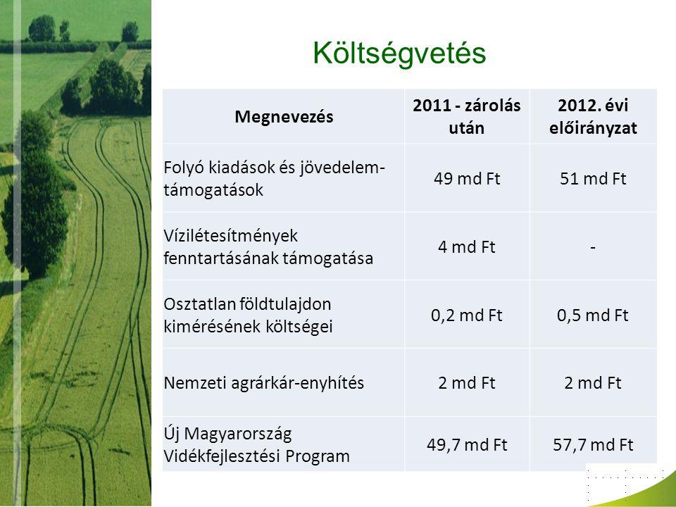 Költségvetés Megnevezés 2011 - zárolás után 2012. évi előirányzat Folyó kiadások és jövedelem- támogatások 49 md Ft51 md Ft Vízilétesítmények fenntart