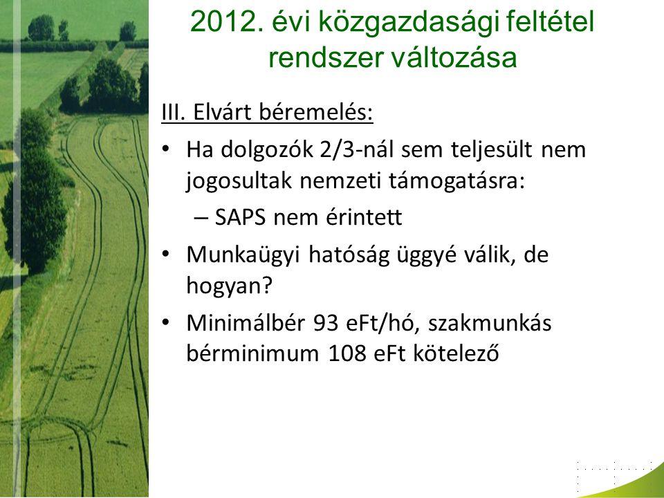 2012. évi közgazdasági feltétel rendszer változása III. Elvárt béremelés: Ha dolgozók 2/3-nál sem teljesült nem jogosultak nemzeti támogatásra: – SAPS