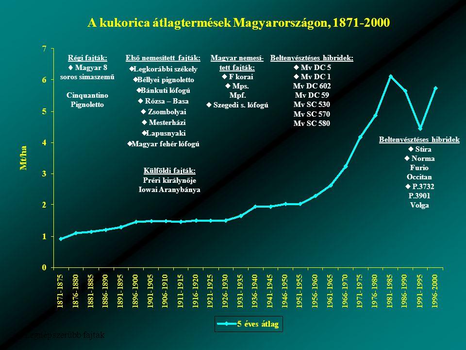 A kukorica átlagtermések Magyarországon, 1871-2000 Mt/ha  Legnépszerűbb fajták Régi fajták:  Magyar 8 soros simaszemű Cinquantino Pignoletto Külföldi fajták: Préri királynője Iowai Aranybánya Magyar nemesí- tett fajták:  F korai  Mps.
