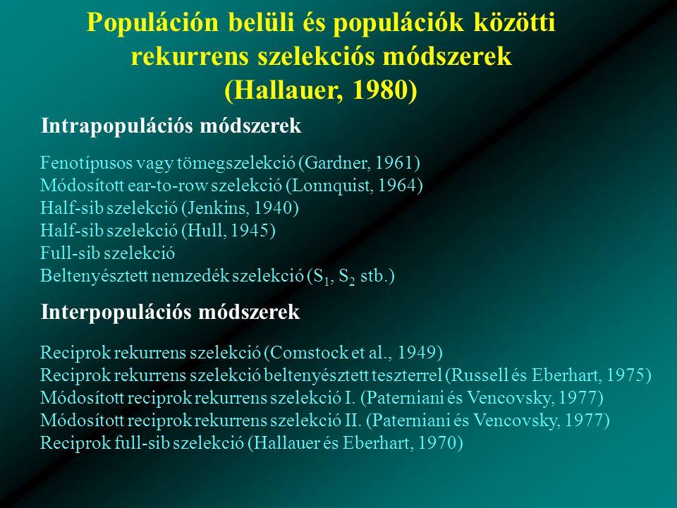 Populáción belüli és populációk közötti rekurrens szelekciós módszerek (Hallauer, 1980) Intrapopulációs módszerek Fenotípusos vagy tömegszelekció (Gardner, 1961) Módosított ear-to-row szelekció (Lonnquist, 1964) Half-sib szelekció (Jenkins, 1940) Half-sib szelekció (Hull, 1945) Full-sib szelekció Beltenyésztett nemzedék szelekció (S 1, S 2 stb.) Interpopulációs módszerek Reciprok rekurrens szelekció (Comstock et al., 1949) Reciprok rekurrens szelekció beltenyésztett teszterrel (Russell és Eberhart, 1975) Módosított reciprok rekurrens szelekció I.