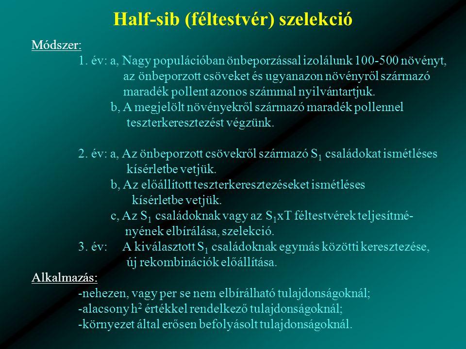 Half-sib (féltestvér) szelekció Módszer: 1.