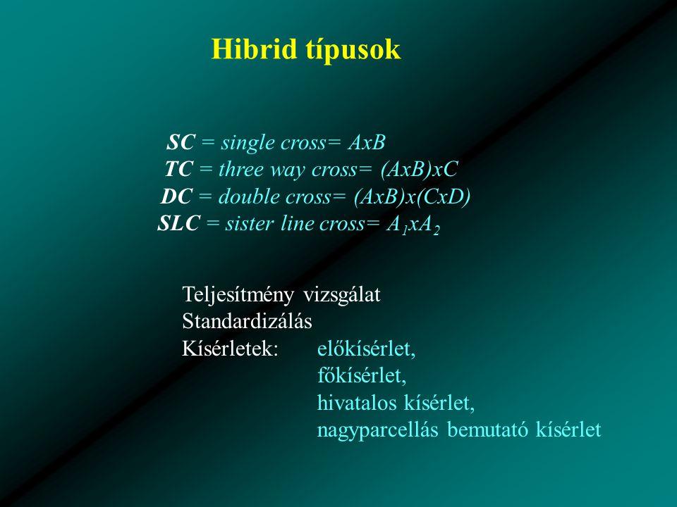 Hibrid típusok SC = single cross= AxB TC = three way cross= (AxB)xC DC = double cross= (AxB)x(CxD) SLC = sister line cross= A 1 xA 2 Teljesítmény vizsgálat Standardizálás Kísérletek:előkísérlet, főkísérlet, hivatalos kísérlet, nagyparcellás bemutató kísérlet