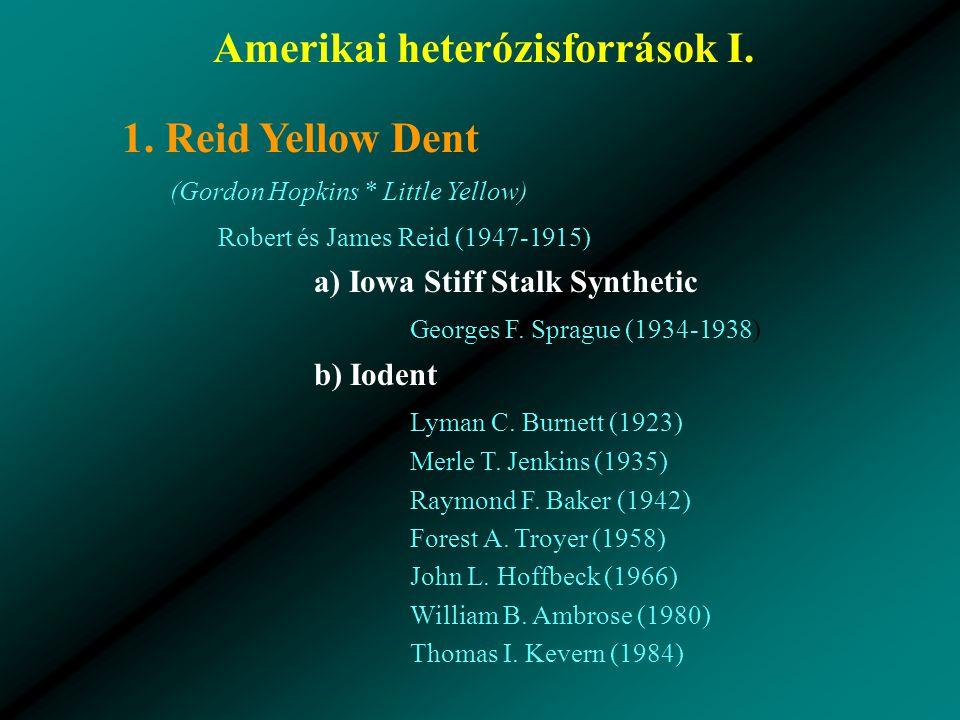 Amerikai heterózisforrások I.1.