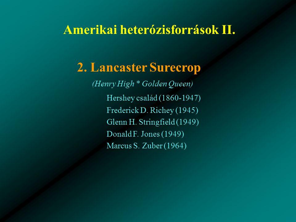Amerikai heterózisforrások II.2.