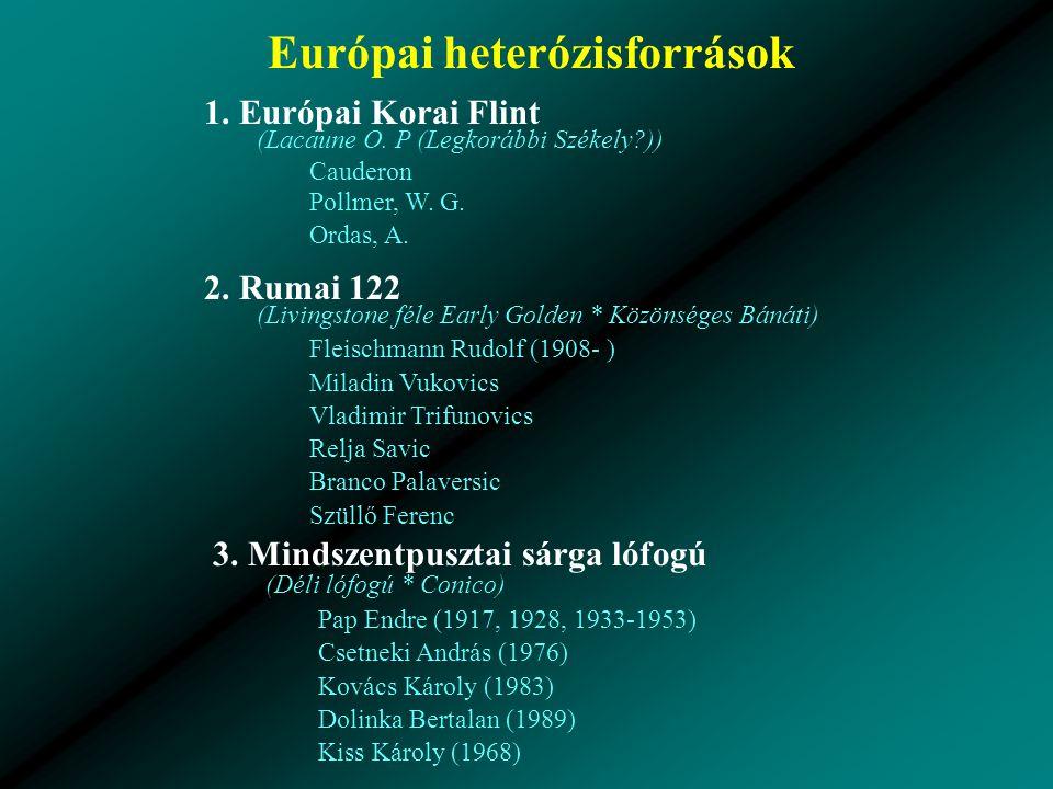 Európai heterózisforrások 2.