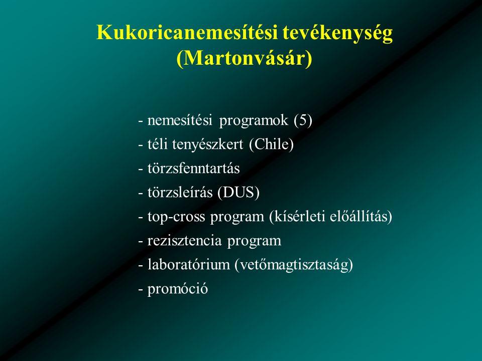Kukoricanemesítési tevékenység (Martonvásár) - nemesítési programok (5) - téli tenyészkert (Chile) - törzsfenntartás - törzsleírás (DUS) - top-cross program (kísérleti előállítás) - rezisztencia program - laboratórium (vetőmagtisztaság) - promóció