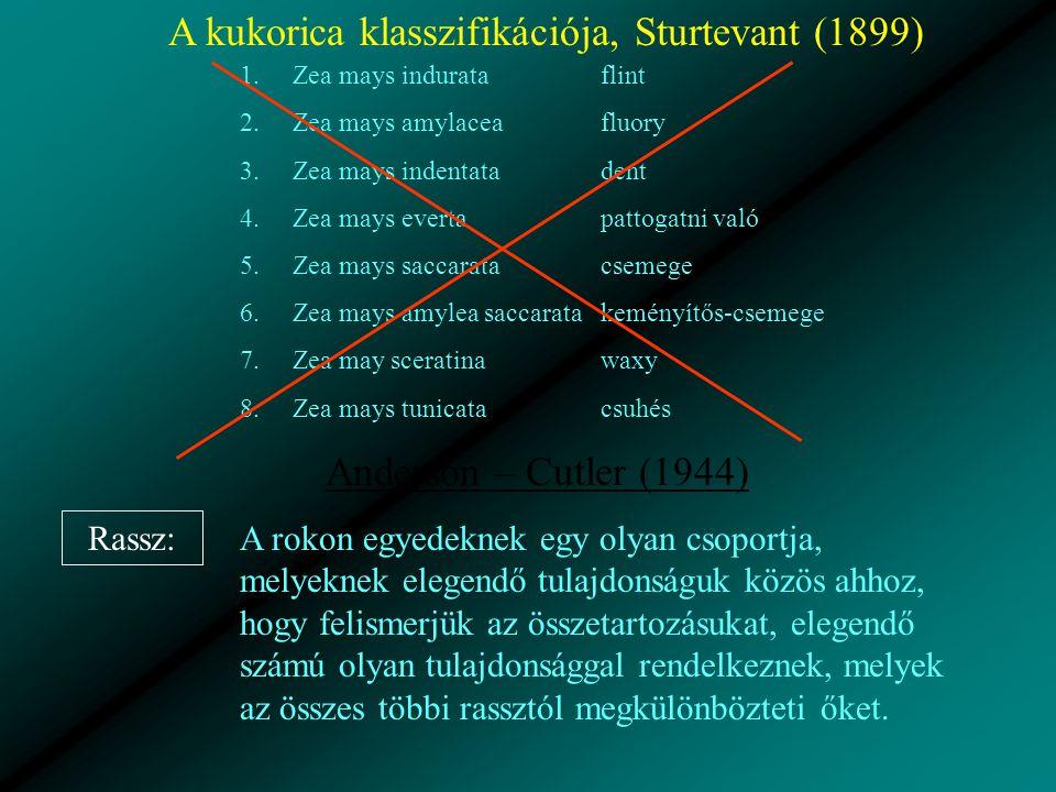A kukorica klasszifikációja, Sturtevant (1899) 1.Zea mays indurata 2.Zea mays amylacea 3.Zea mays indentata 4.Zea mays everta 5.Zea mays saccarata 6.Zea mays amylea saccarata 7.Zea may sceratina 8.Zea mays tunicata flint fluory dent pattogatni való csemege keményítős-csemege waxy csuhés Anderson – Cutler (1944) Rassz: A rokon egyedeknek egy olyan csoportja, melyeknek elegendő tulajdonságuk közös ahhoz, hogy felismerjük az összetartozásukat, elegendő számú olyan tulajdonsággal rendelkeznek, melyek az összes többi rassztól megkülönbözteti őket.