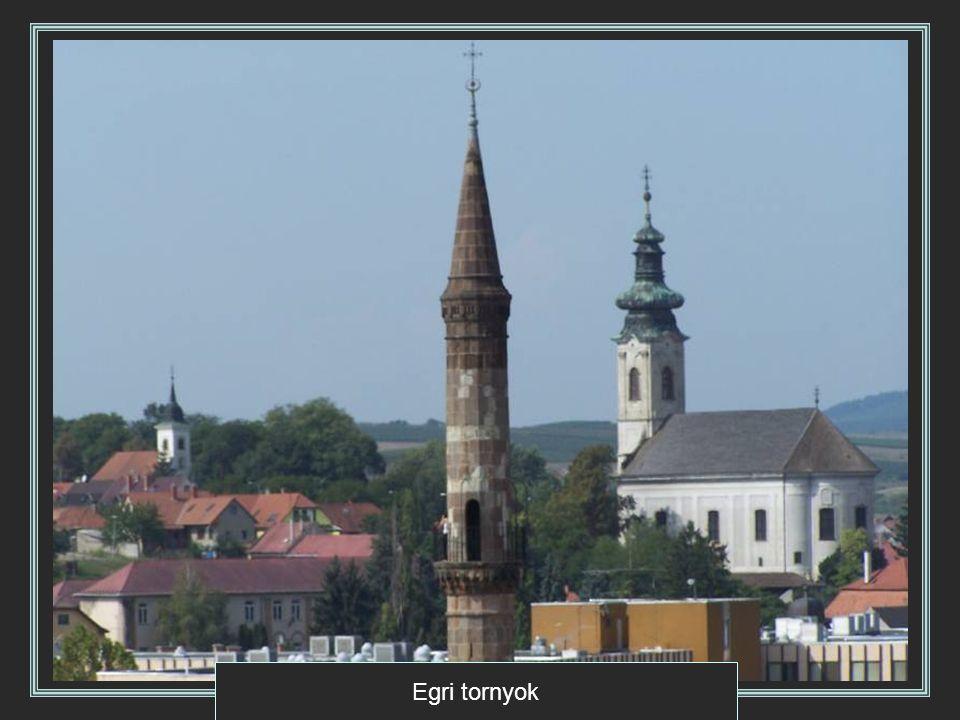 A Rákócziak várkastélya Szerencsen