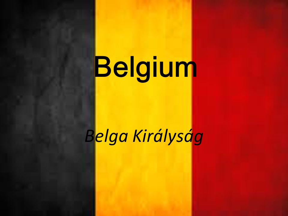 Belgium egy etnikailag és nyelvileg megosztott nyugat-európai ország állampolgárai három jól elkülöníthető csoportja a hollandul beszélő flamandok, a franciául beszélő vallonok és az ország keleti részén élő német közösség Szomszédjai északról Hollandia, keletről Németország és Luxemburg, délről és nyugatról Franciaország, északnyugat felől az Északi-tengerhatárolja.