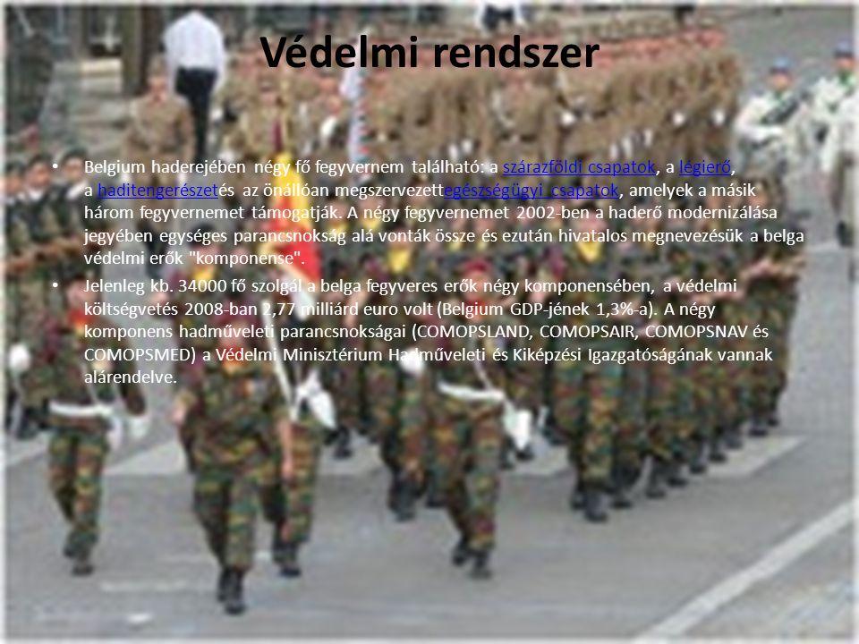 Védelmi rendszer Belgium haderejében négy fő fegyvernem található: a szárazföldi csapatok, a légierő, a haditengerészetés az önállóan megszervezettegé