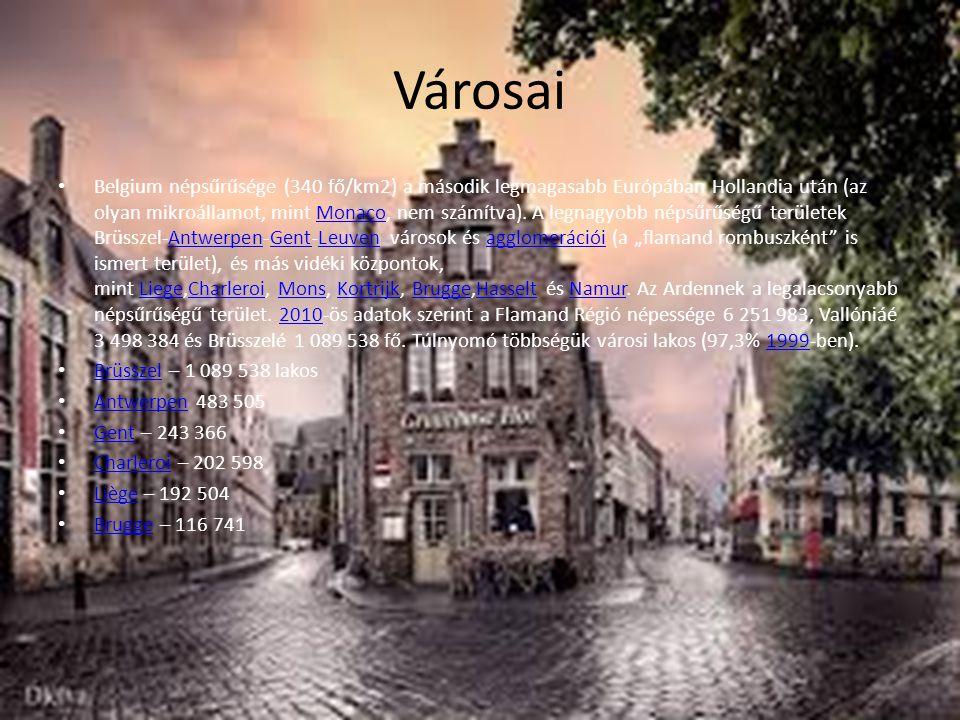 Városai Belgium népsűrűsége (340 fő/km2) a második legmagasabb Európában Hollandia után (az olyan mikroállamot, mint Monaco, nem számítva). A legnagyo