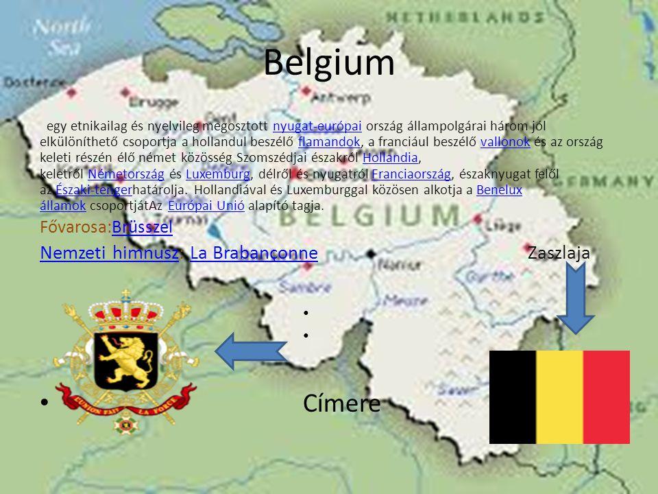 Belgium egy etnikailag és nyelvileg megosztott nyugat-európai ország állampolgárai három jól elkülöníthető csoportja a hollandul beszélő flamandok, a