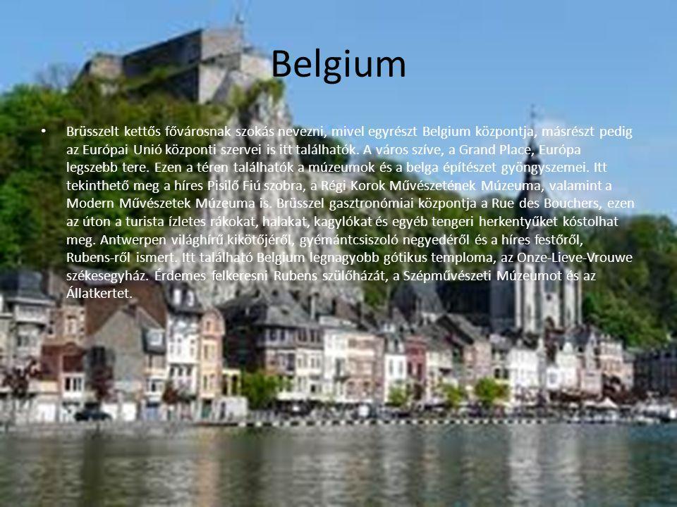 Domborzata Belgium teljes területe 33 990 km², ebből szárazföld 30 528 km², vízfolyások és tavak területe kb.