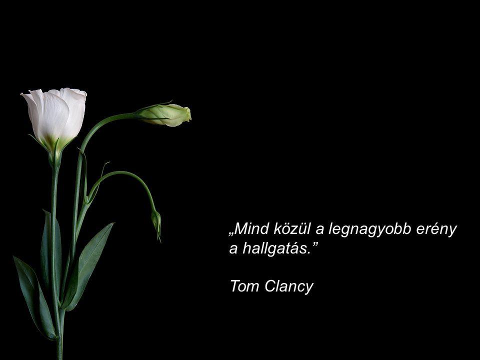 """""""Mind közül a legnagyobb erény a hallgatás. Tom Clancy"""
