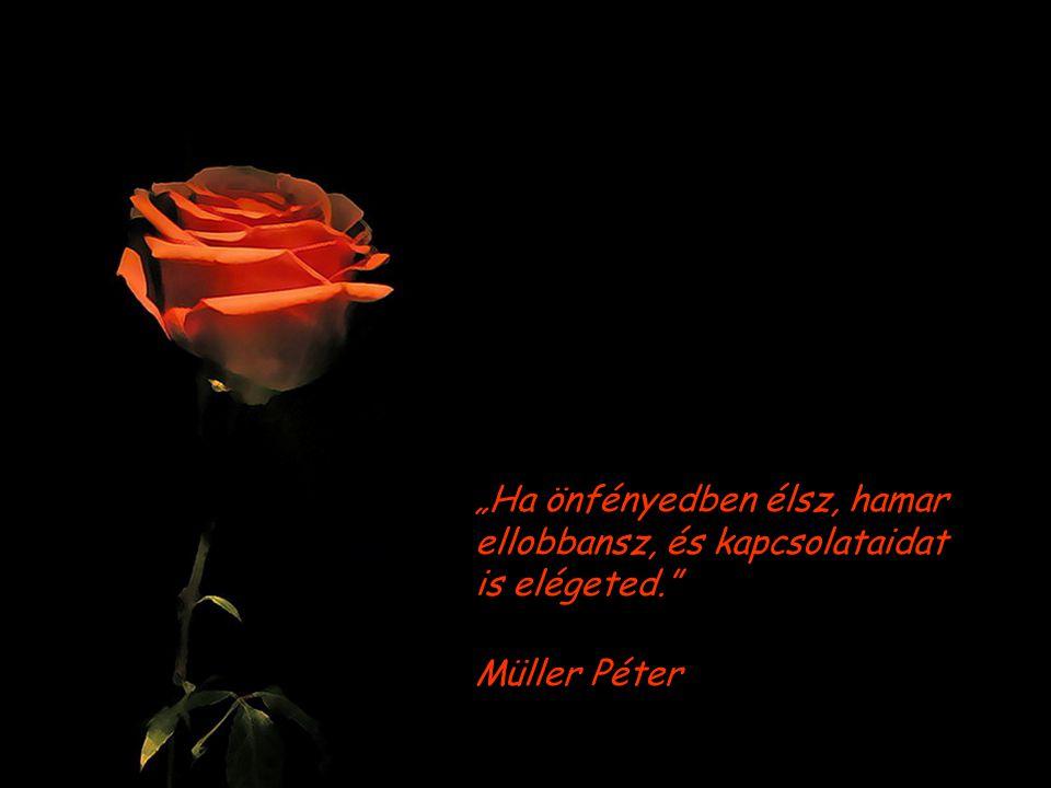"""""""Ha önfényedben élsz, hamar ellobbansz, és kapcsolataidat is elégeted. Müller Péter"""