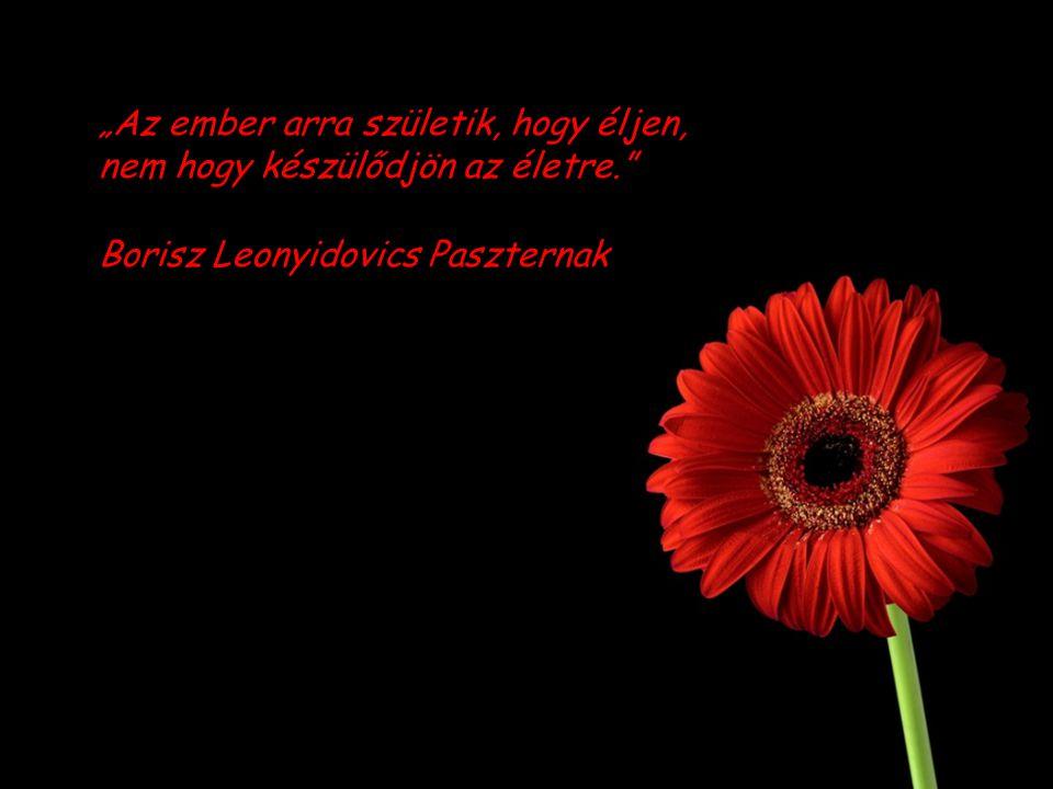 """""""Az ember arra születik, hogy éljen, nem hogy készülődjön az életre. Borisz Leonyidovics Paszternak"""