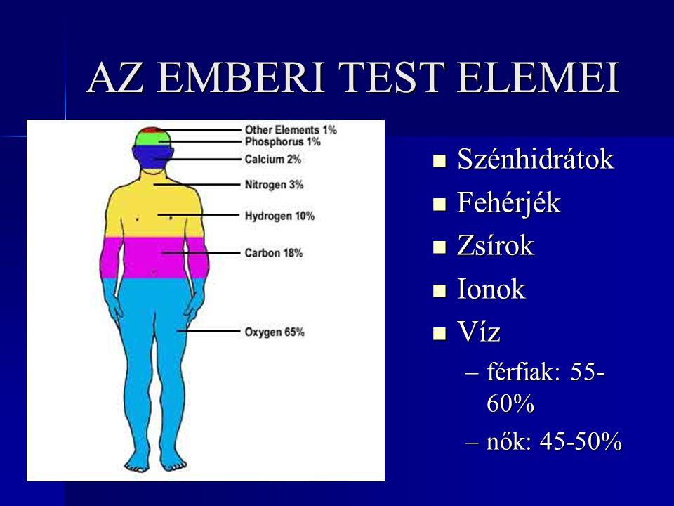 AZ EMBERI TEST ELEMEI Szénhidrátok Szénhidrátok Fehérjék Fehérjék Zsírok Zsírok Ionok Ionok Víz Víz –férfiak: 55- 60% –nők: 45-50%