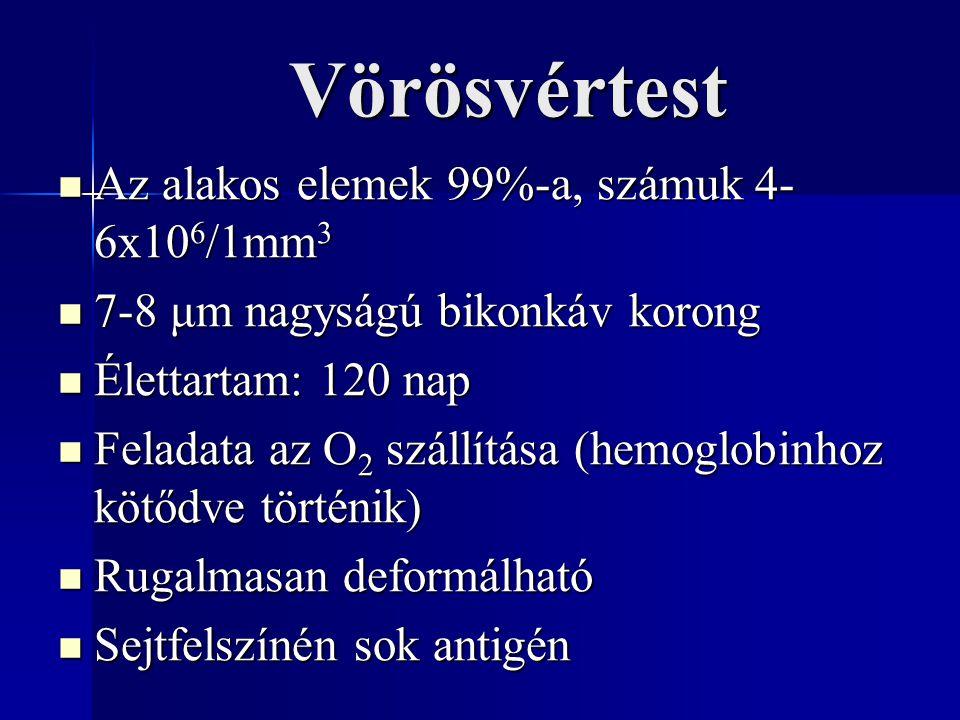 Vörösvértest Az alakos elemek 99%-a, számuk 4- 6x10 6 /1mm 3 Az alakos elemek 99%-a, számuk 4- 6x10 6 /1mm 3 7-8 μm nagyságú bikonkáv korong 7-8 μm nagyságú bikonkáv korong Élettartam: 120 nap Élettartam: 120 nap Feladata az O 2 szállítása (hemoglobinhoz kötődve történik) Feladata az O 2 szállítása (hemoglobinhoz kötődve történik) Rugalmasan deformálható Rugalmasan deformálható Sejtfelszínén sok antigén Sejtfelszínén sok antigén