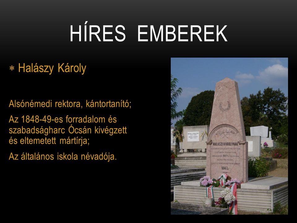  Halászy Károly Alsónémedi rektora, kántortanító; Az 1848-49-es forradalom és szabadságharc Ócsán kivégzett és eltemetett mártírja; Az általános isko