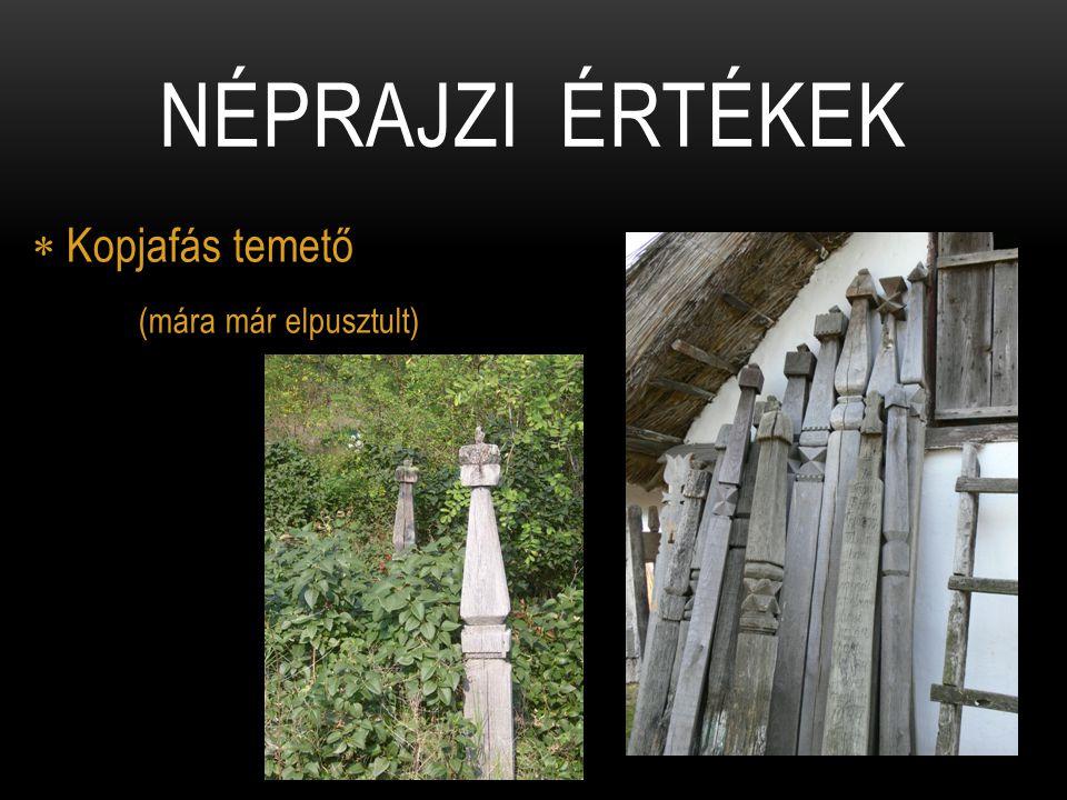  Kopjafás temető (mára már elpusztult) NÉPRAJZI ÉRTÉKEK