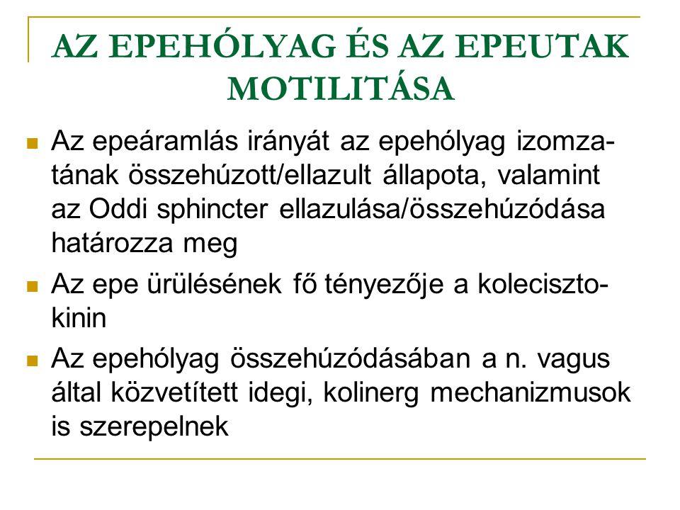 AZ EPEHÓLYAG ÉS AZ EPEUTAK MOTILITÁSA Az epeáramlás irányát az epehólyag izomza- tának összehúzott/ellazult állapota, valamint az Oddi sphincter ellazulása/összehúzódása határozza meg Az epe ürülésének fő tényezője a koleciszto- kinin Az epehólyag összehúzódásában a n.