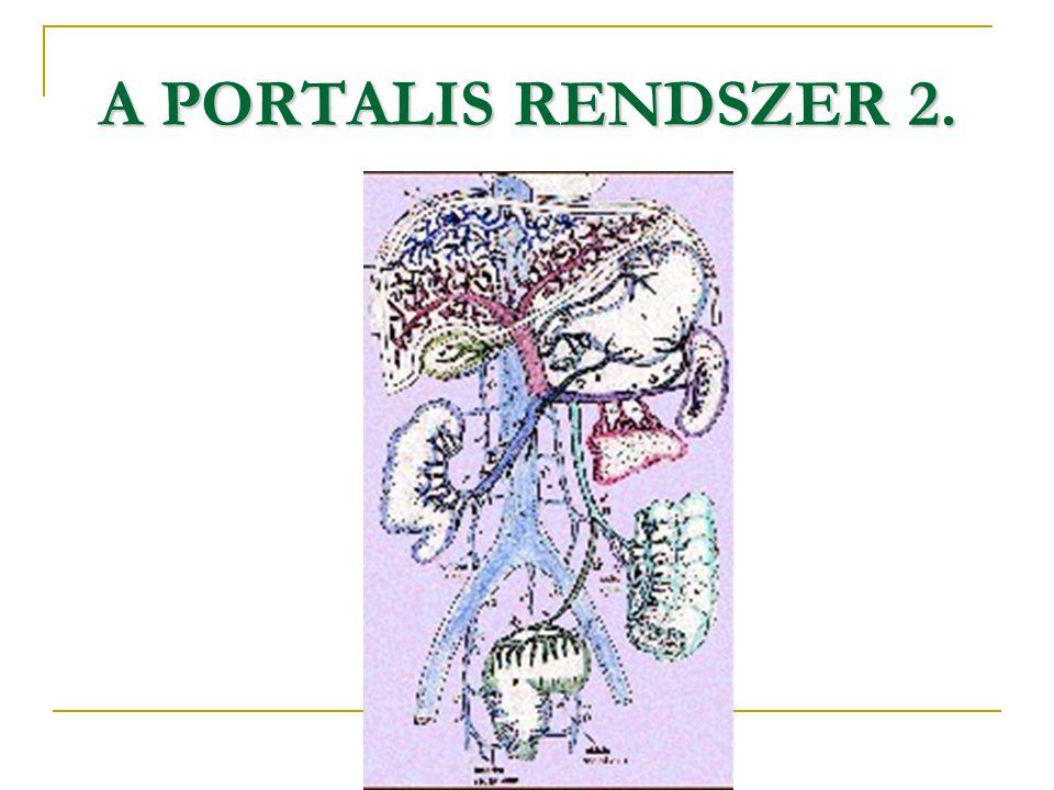 A PORTALIS RENDSZER 2.