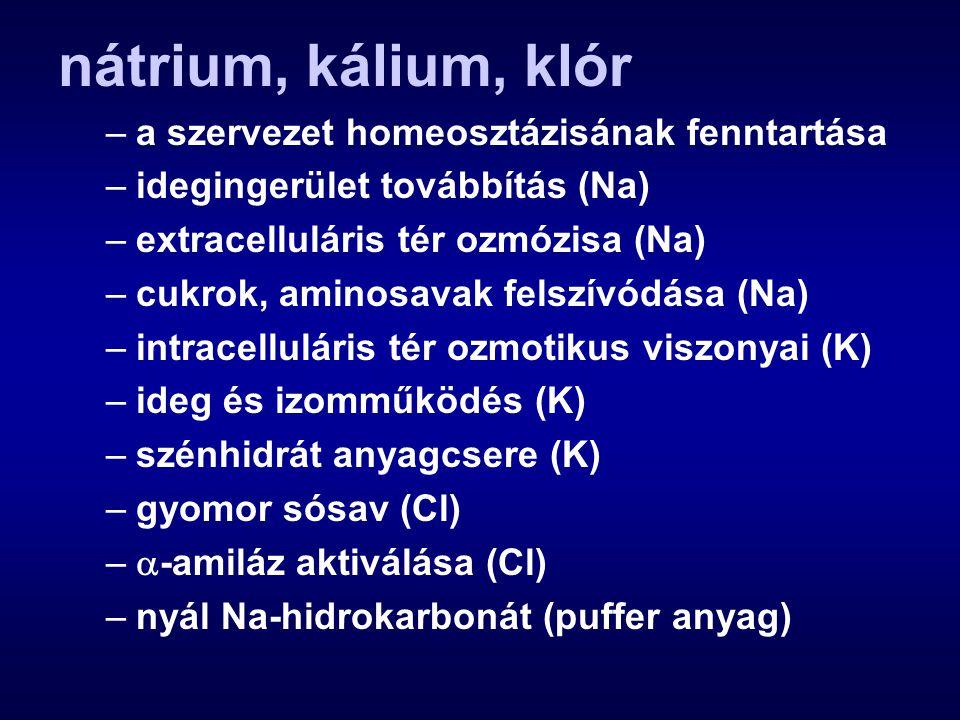 nátrium, kálium, klór –a szervezet homeosztázisának fenntartása –idegingerület továbbítás (Na) –extracelluláris tér ozmózisa (Na) –cukrok, aminosavak