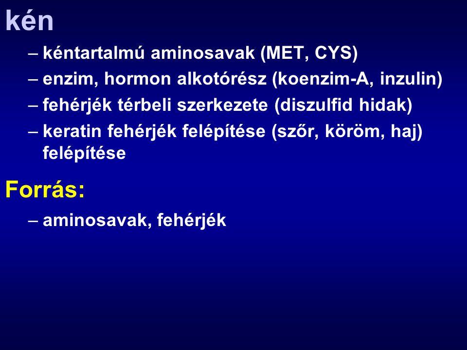 kén –kéntartalmú aminosavak (MET, CYS) –enzim, hormon alkotórész (koenzim-A, inzulin) –fehérjék térbeli szerkezete (diszulfid hidak) –keratin fehérjék