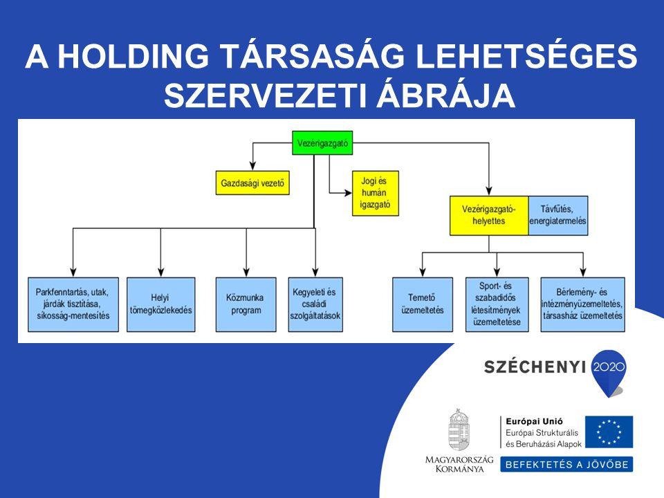 A HOLDING TÁRSASÁG LEHETSÉGES SZERVEZETI ÁBRÁJA