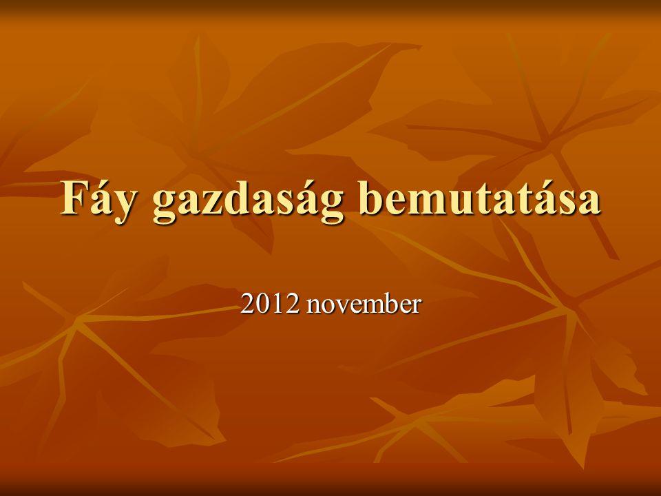 Fáy gazdaság bemutatása 2012 november