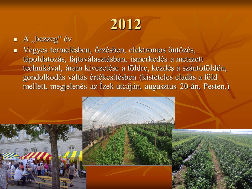 """2012 A """"bezzeg év A """"bezzeg év Vegyes termelésben, őrzésben, elektromos öntözés, tápoldatozás, fajtaválasztásban, ismerkedés a metszett technikával, áram kivezetése a földre, kezdés a szántóföldön, gondolkodás váltás értékesítésben (kistételes eladás a föld mellett, megjelenés az Ízek utcáján, augusztus 20-án, Pesten.) Vegyes termelésben, őrzésben, elektromos öntözés, tápoldatozás, fajtaválasztásban, ismerkedés a metszett technikával, áram kivezetése a földre, kezdés a szántóföldön, gondolkodás váltás értékesítésben (kistételes eladás a föld mellett, megjelenés az Ízek utcáján, augusztus 20-án, Pesten.)"""