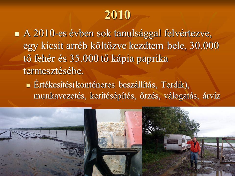 2010 A 2010-es évben sok tanulsággal felvértezve, egy kicsit arréb költözve kezdtem bele, 30.000 tő fehér és 35.000 tő kápia paprika termesztésébe.