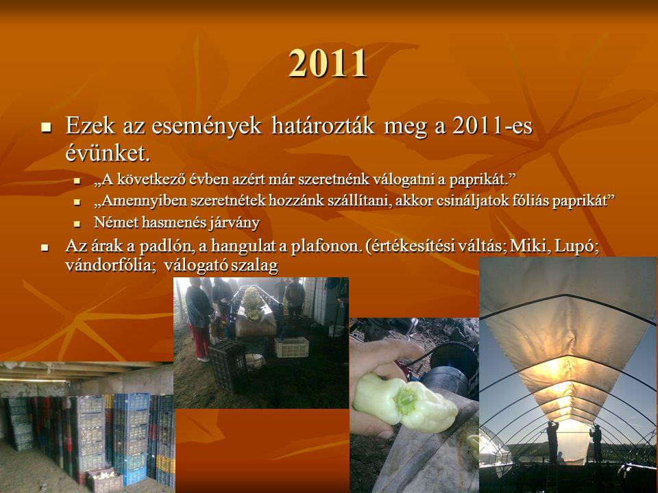 2011 Ezek az események határozták meg a 2011-es évünket.