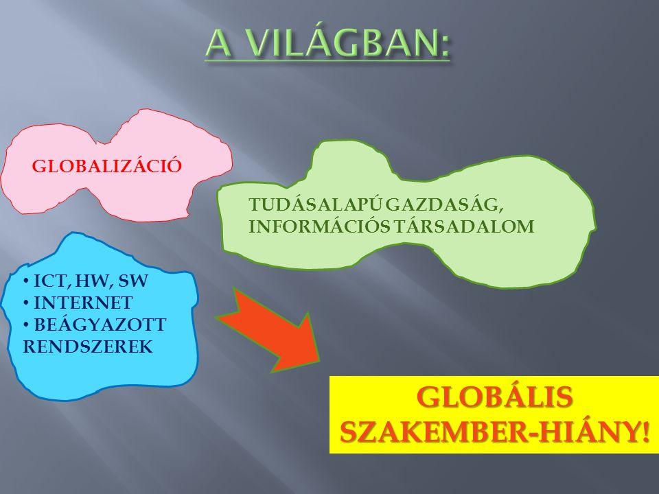 GLOBALIZÁCIÓ TUDÁSALAPÚ GAZDASÁG, INFORMÁCIÓS TÁRSADALOM ICT, HW, SW INTERNET BEÁGYAZOTT RENDSZEREK GLOBÁLIS SZAKEMBER-HIÁNY!