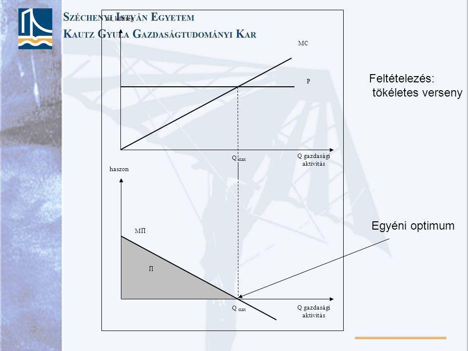 Q gazdasági aktivitás ár, költség MC P Q max Q gazdasági aktivitás haszon MM Q max  Feltételezés: tökéletes verseny Egyéni optimum