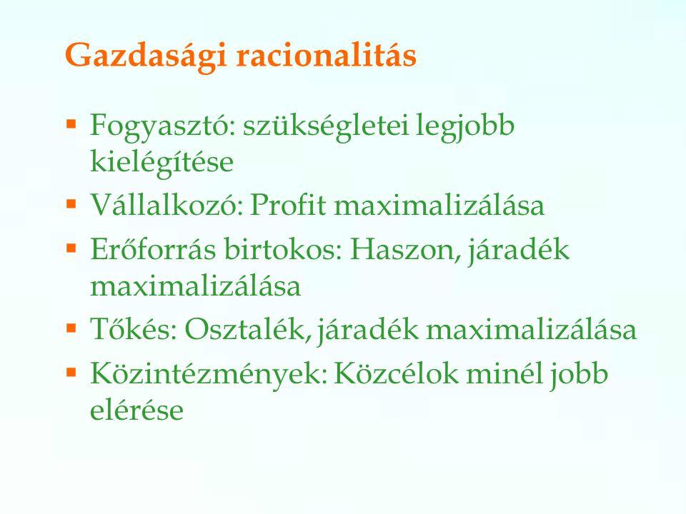 Gazdasági racionalitás  Fogyasztó: szükségletei legjobb kielégítése  Vállalkozó: Profit maximalizálása  Erőforrás birtokos: Haszon, járadék maximalizálása  Tőkés: Osztalék, járadék maximalizálása  Közintézmények: Közcélok minél jobb elérése