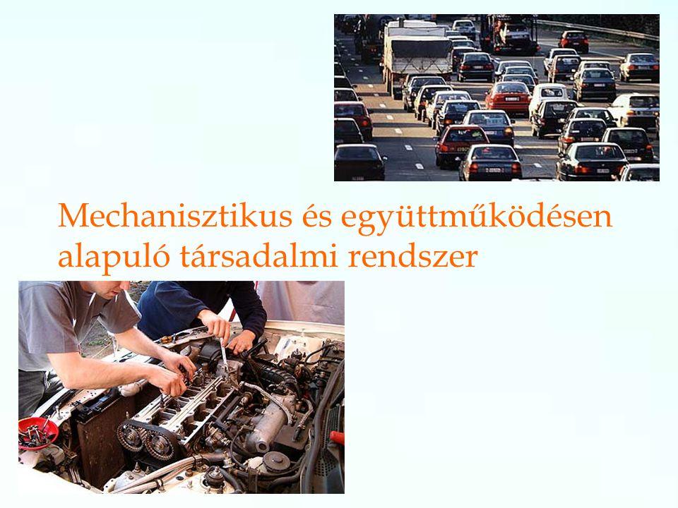 Mechanisztikus és együttműködésen alapuló társadalmi rendszer