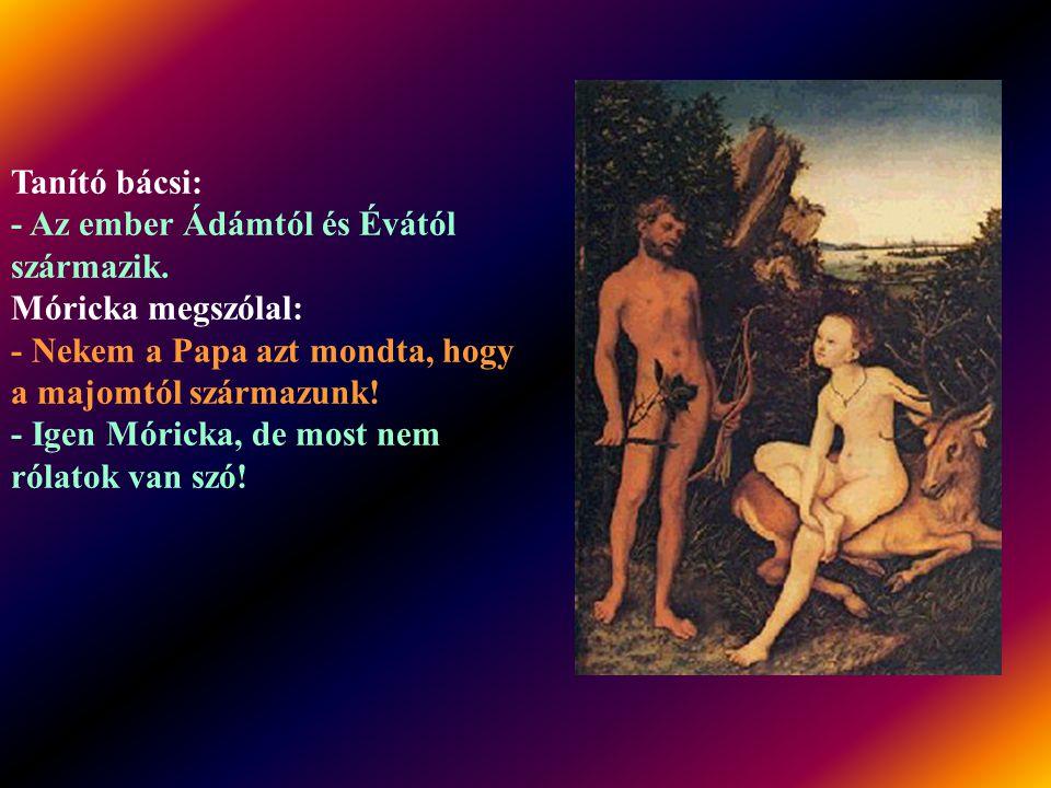 A tanító megkérdi Mórickát: - Mondd meg, fiam, ki volt a legelső ember? - Albert Flórián - feleli kapásból Móricka. - Te szamár! - fakad ki a tanító.