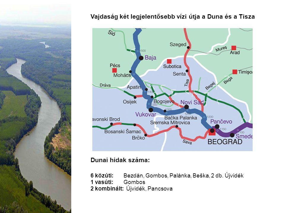 Vajdaság két legjelentősebb vízi útja a Duna és a Tisza Dunai hidak száma: 6 közúti: Bezdán, Gombos, Palánka, Beška, 2 db. Újvidék 1 vasúti: Gombos 2