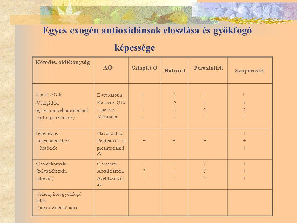Egyes exogén antioxidánsok eloszlása és gyökfogó képessége Kötődés, oldékonyság AO Szinglet O Hidroxil Peroxinitrit Szuperoxid Lipofil AO-k (Vérlipidek, sejt és intracell.membránok sejt-organellumok) E-vit karotin.